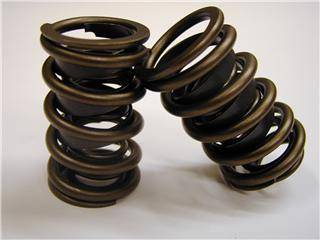 Comp Cams - Comp Cams Dual Valve Springs, Flat Tappet CCA-998-16